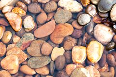 Beautiful rocks and  gravels background in clear water stream at. The forest Stock Photography