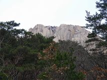 Beautiful rocks in South Korea Royalty Free Stock Photos