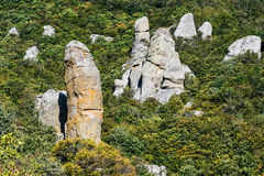 Beautiful rocks in the Valley of Ghosts, Demerdzhi mountain Stock Images