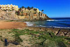 Beautiful Rocky Beach and Palm Trees. With calm ocean rolling in. The beaches near Cascais, Portugal are rather beautiful Stock Photos
