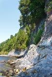 Beautiful rocky beach with pine trees on rocks Stock Photos