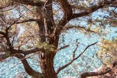 Beautiful rocky beach on Sardinia, Italy Royalty Free Stock Images