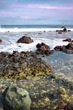 Beautiful rocky beach in Tenerife Island Stock Images