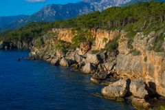 Beautiful rocky coastline with sea waves and trees royalty free stock photo