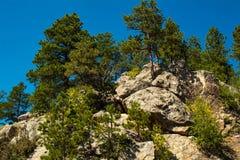 Beautiful rocky mountain with green trees. South Dakota USA royalty free stock photos