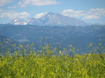 Beautiful Rocky Mountains in the Springtime Stock Images