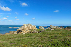 Beautiful rocky sea coast and greenery Royalty Free Stock Images