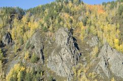 Beautiful rocky slope covered with forest on a Sunny autumn day stock photo
