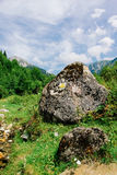 Beautiful romanian carpathians mountain scenery Royalty Free Stock Images
