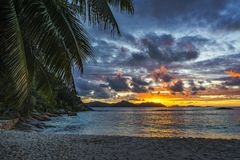 Beautiful romantic afterglow on paradise beach at anse severe, l. Beautiful romantic sunset through a palm leaf on paradise beach at anse severe, la digue Stock Image