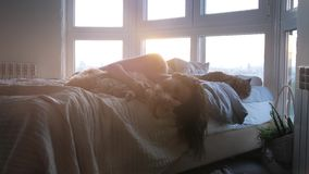 Beautiful romantic brunette woman lying on bed by the window with her lovely cat during amazing sunset stock video