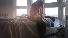 Beautiful romantic brunette woman lying on bed by the window and holds her lovely cat during amazing sunset stock video footage