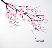Beautiful romantic card with sakura branch. Royalty Free Stock Photo