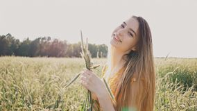 Beautiful romantic girl holding green wheat ears in her hand. A girl in a field in the rays of the summer sun. Pleasure. Nature stock footage