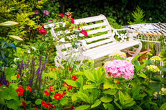 Beautiful, romantic, home garden with variety of blooming flowers, summertime Royalty Free Stock Photos