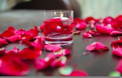 Beautiful romantic red candles with flower petals on dark wooden background Royalty Free Stock Images
