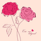 Beautiful romantic roses Royalty Free Stock Image