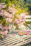 Beautiful and romantic scene in the home garden with a vase of Japanese cherry tree blossoms. On the white table Royalty Free Stock Photography