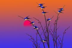 Beautiful romantic scenery in the evening Stock Image