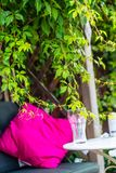Beautiful, romantic seat in the garden with pink cushion and climbing ivy. Beautiful, romantic seat in the garden with pink cushion and climbing ivy, close up royalty free stock image