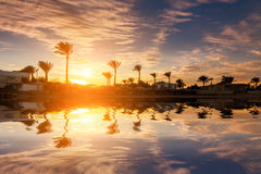 Beautiful romantic sunset over a sandy beach and palm trees. Egypt. Hurghada Royalty Free Stock Photos