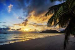 Beautiful romantic sunset in paradise,palm, white sand and turqu. Amazing beautiful romantic sunset in paradise, a palm tree, white sand and turquoise water on Stock Photos