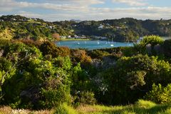 Tutukaka harbour with blue bay, New Zealand. Beautiful romantic view on little bay in Tutukaka harbour, green trees, yachts, bushes, New Zealand royalty free stock image