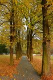 Beautiful romantic way in a park with colorful trees. Autumn natural background landscape. Royalty Free Stock Photos