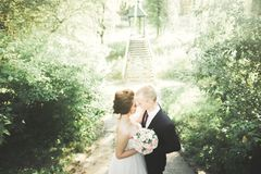 Beautiful romantic wedding couple of newlyweds hugging in green park Royalty Free Stock Photos