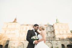 Beautiful romantic wedding couple of newlyweds hugging near old castle Stock Images