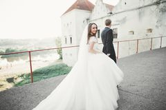 Beautiful romantic wedding couple of newlyweds hugging near old castle Royalty Free Stock Images