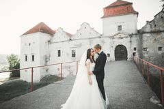 Beautiful romantic wedding couple of newlyweds hugging near old castle Royalty Free Stock Image