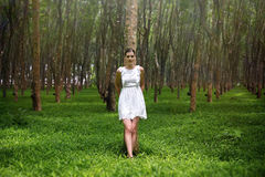 Beautiful romantic woman in forest Royalty Free Stock Images