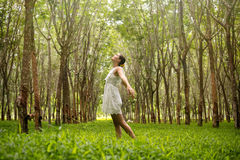 Beautiful romantic woman in the forest Stock Images