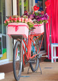 Beautiful of rose artificial flowers in bicycle Stock Image