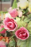 Beautiful of rose artificial flowers in garden Stock Photos