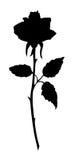 Beautiful rose black silhouette Stock Images