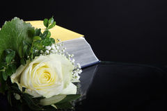 Beautiful rose with a book Royalty Free Stock Photography