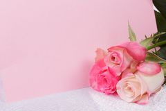 Beautiful rose and card for your text Stock Images