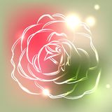 Beautiful rose on colorful background with neon lights, vector illustration Stock Images