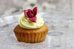 Beautiful rose cupcake Royalty Free Stock Photo