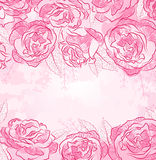 Beautiful rose design background Royalty Free Stock Images