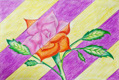 Beautiful rose drawing made by sketch pen and color pencil, a child Art Stock Image