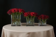 Beautiful rose flower arrangements Stock Photos