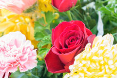 Beautiful rose flower in a bouquet Royalty Free Stock Photos
