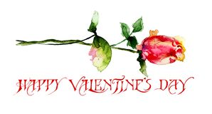Beautiful Rose flower with title Happy Valentine's day. Beautiful Rose flower with title Happy Valentine's day, watercolor illustration Stock Photography