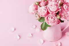 Beautiful rose flowers in pink vase for Womens day or Mothers day greeting card stock photography