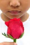Beautiful rose in hand Royalty Free Stock Photo
