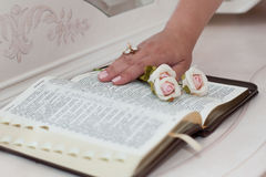Beautiful rose and hand on the open book. Flowers on bible text closeup stock photography