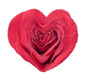 Beautiful rose heart Royalty Free Stock Images
